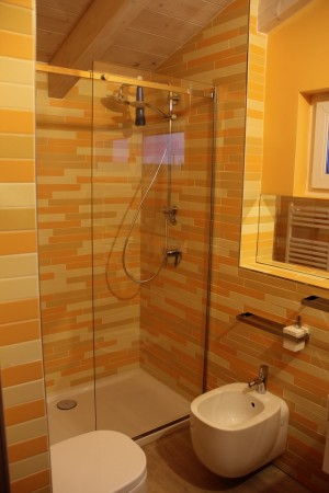 fixed glass for shower enclosures with horizontal support